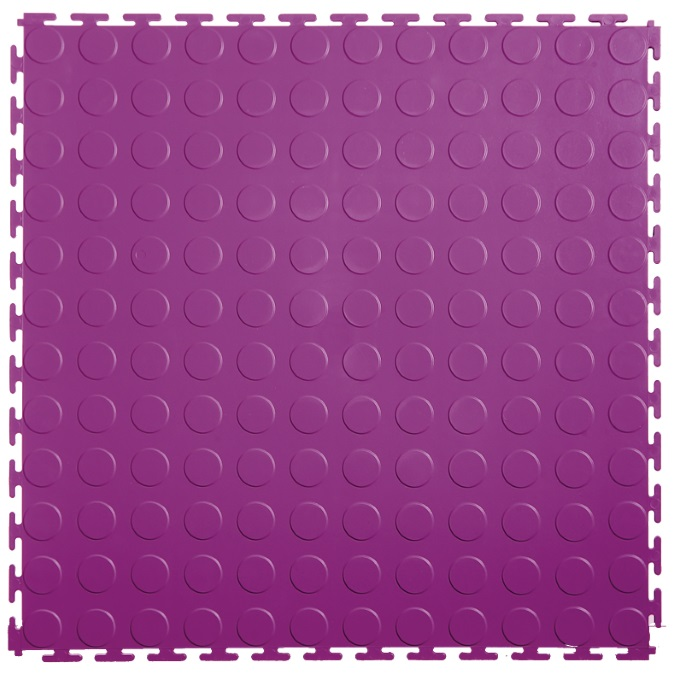 Coin Purple